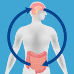 """Parkinson's Disease, Probiotics, and """"Mixed Microbial Infection"""""""